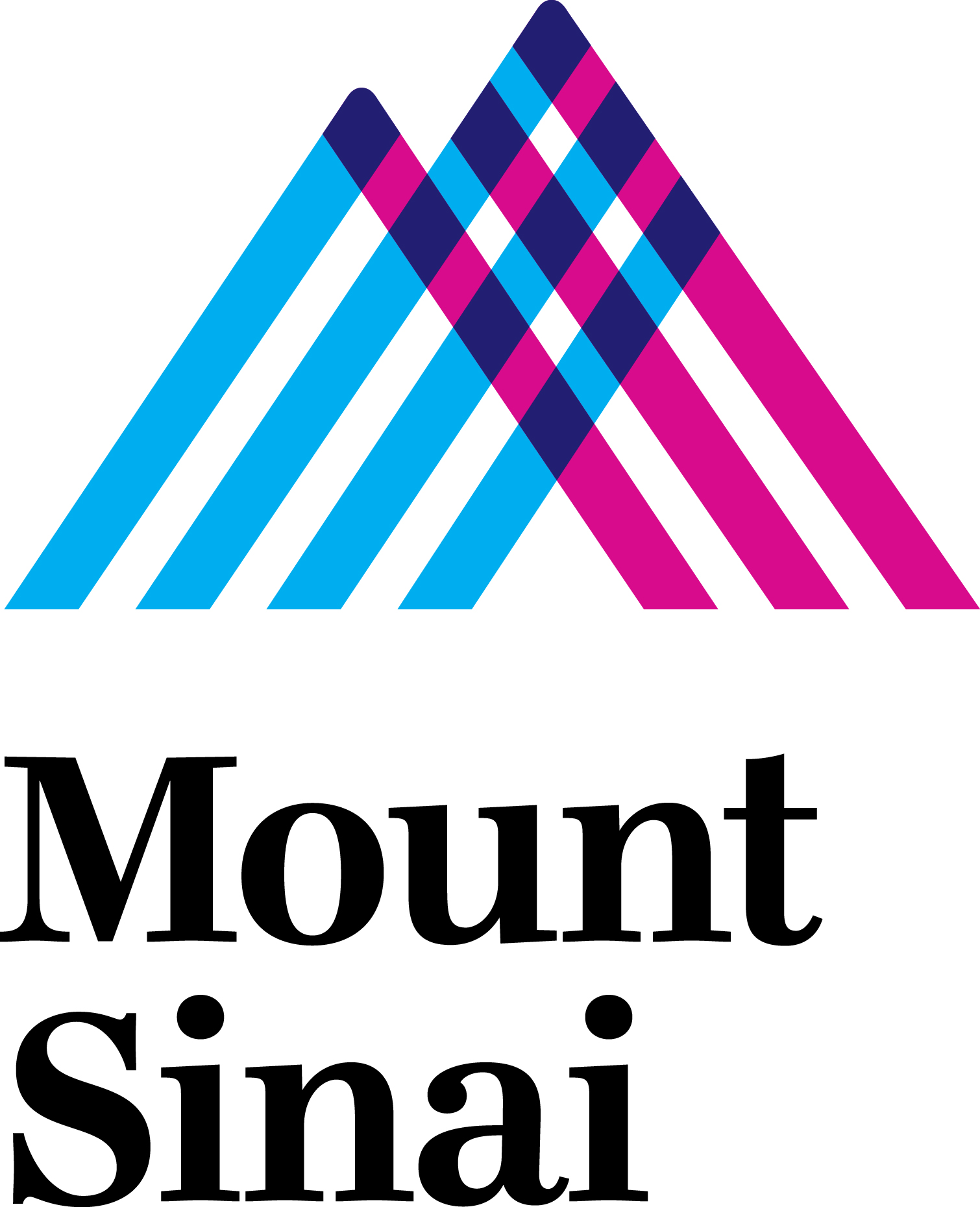 Mount Sinai Hospital, NYC Spinal Platinum Sponsor